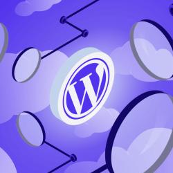 Responsive Genesis Child Themes For Wordpress