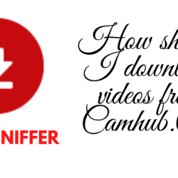 How should I download videos from Camhub.Cc