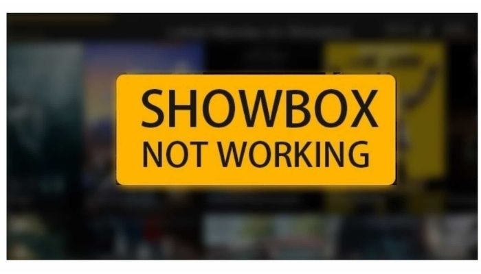 Why is Showbox not Working